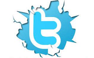 twitter flood nasıl yapılır
