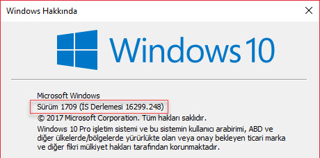windows 10 sistem bilgisi